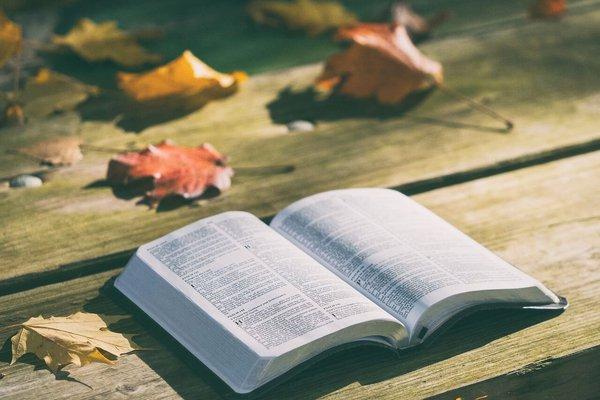 O homem é salvo da condenação eterna, pela fé ou pelas obras?
